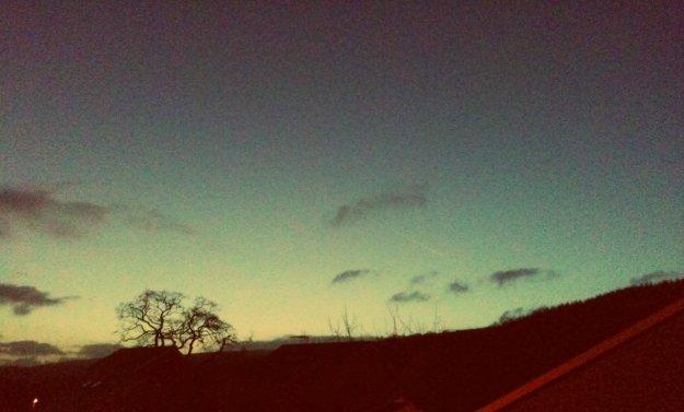 STARSphoto