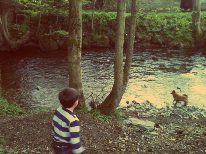 alf by river
