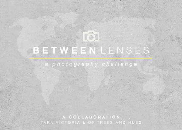 BetweenLenses600x429