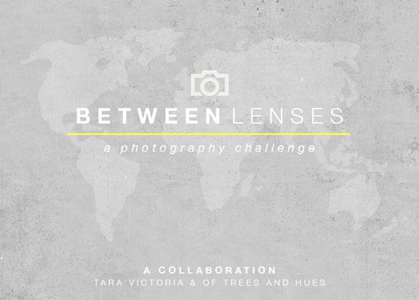BetweenLenses600x429